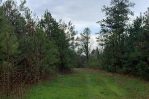 Gordon County, GA