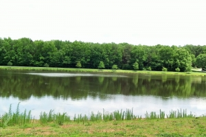 Large Acre Homesite with Lake View - Greenville County SC