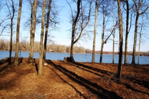 Waterfront Lot - Hale County AL