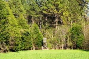 <p>Land for sale in al, recreational land for sale in al, timberland for sale in al</p>