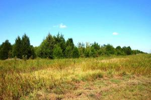 Recreational Investment - Lowndes County AL