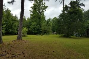 21 acre Hwy 49 Star MS property in Rankin, MS (9 of 13)