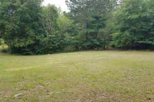 21 acre Hwy 49 Star MS property in Rankin, MS (10 of 13)