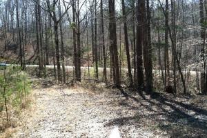 <p>sc hunting land for sale, land for sale sc</p>