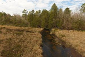 Black Creek Hunting and Recreational Property - Lexington County SC