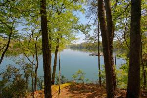 Smith Lake Lot 1 at Lakewoods on Rock Creek - Winston County AL