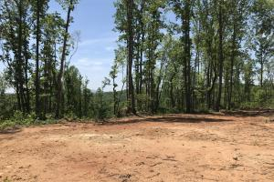 Cherokee Highway Homesite  - Greenville County SC