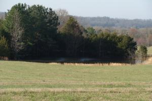 16.85 Acres of Pasture and/or Developmental  - White County AR