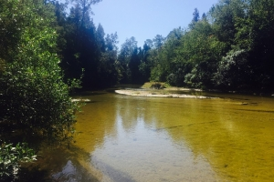 Styx River Recreational Investment - Baldwin County AL