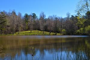Black Belt Lodge Timber and Hunting Retreat - Dallas County AL
