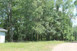 23 Acre small hunting tract in Copiah Co. - Copiah County MS