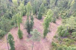 Lugoff Homesite with Acreage