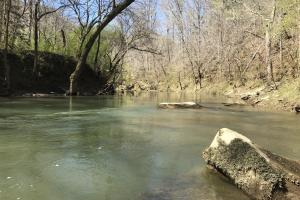 Lost Creek Hunting and Recreational Tract - Walker County AL