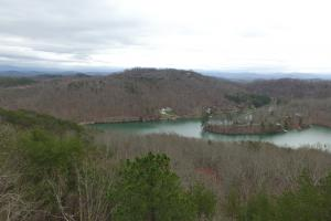 Polly's Mountain Tract - Monroe County TN