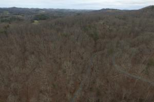 Laurel Branch Road Acreage - Monroe County TN