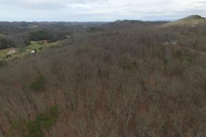 Most of the property, which is the wooded ridge in the photo. (2 of 8)