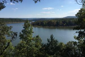 Burnt Ridge Rd Lakefront Lot 1 on Greers Ferry Lake - Van Buren County AR