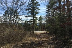 Burnt Ridge Rd Lake and Mountain View Lot 3 - Van Buren County AR