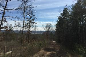 Burnt Ridge Rd Lake and Mountain View Lot 3 in Van Buren, AR (2 of 11)