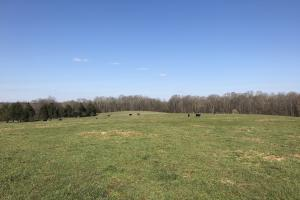 Turkey Hill Ranch - Catawba County NC