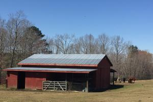 Elgin Private Timber Estate and Farm in Kershaw, SC (10 of 54)