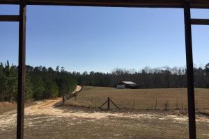 Elgin Private Timber Estate and Farm in Kershaw, SC (43 of 54)
