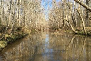 Shoal Creek Recreational Timber & Hunting Tract