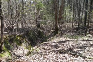 234 Acres Hunting, Recreational, Timber, Farm with Home in Floyd, GA (68 of 99)