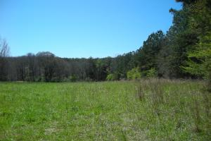 234 Acres Hunting, Recreational, Timber, Farm with Home in Floyd, GA (82 of 99)