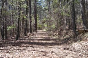 234 Acres Hunting, Recreational, Timber, Farm with Home in Floyd, GA (65 of 99)