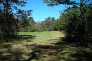 234 Acres Hunting, Recreational, Timber, Farm with Home in Floyd, GA (89 of 99)