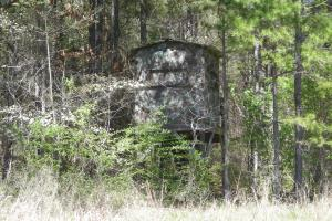 234 Acres Hunting, Recreational, Timber, Farm with Home in Floyd, GA (85 of 99)