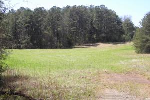 234 Acres Hunting, Recreational, Timber, Farm with Home in Floyd, GA (31 of 99)