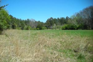 234 Acres Hunting, Recreational, Timber, Farm with Home in Floyd, GA (84 of 99)