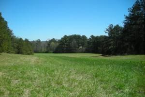 234 Acres Hunting, Recreational, Timber, Farm with Home in Floyd, GA (10 of 99)