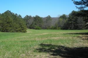 234 Acres Hunting, Recreational, Timber, Farm with Home in Floyd, GA (98 of 99)