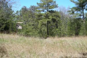 234 Acres Hunting, Recreational, Timber, Farm with Home in Floyd, GA (77 of 99)