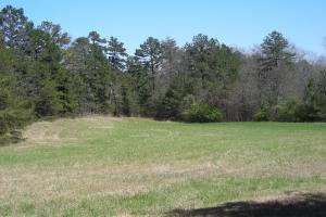 234 Acres Hunting, Recreational, Timber, Farm with Home in Floyd, GA (72 of 99)