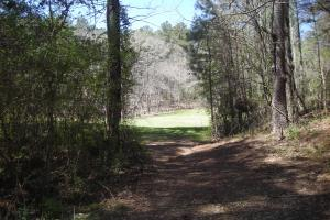 234 Acres Hunting, Recreational, Timber, Farm with Home in Floyd, GA (63 of 99)