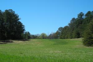 234 Acres Hunting, Recreational, Timber, Farm with Home in Floyd, GA (70 of 99)