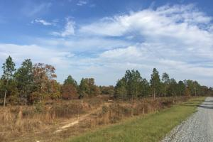 Hound Hollow Streamfront Acreage with Building - Kershaw County SC