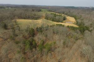 Sugarlimb Road Land Investment in Loudon, TN (2 of 10)