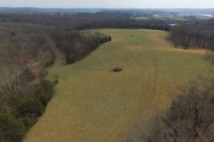 Sugarlimb Road Land Investment in Loudon, TN (7 of 10)