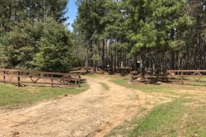 Busy Corner Road Retreat - Amite County MS