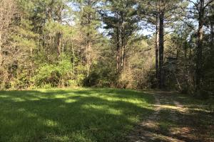 Busy Corner Road Retreat in Amite, MS (17 of 25)