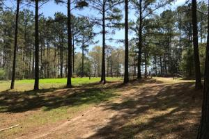 Busy Corner Road Retreat in Amite, MS (18 of 25)