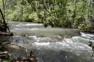 99 +/- Acre Lookout Mountain Recreational Estate w/ Homesites - Walker County GA
