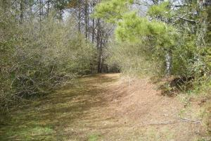 35 Acres Potential Home/Farm/Recreational/Timber Property - Gordon County GA