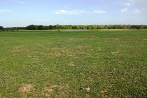 Beautiful Ranch with Pond and Improved Pasture in Madison, TX (2 of 4)