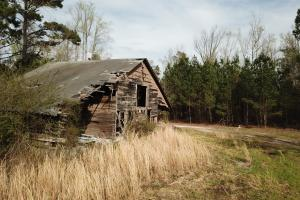 Jordan Branch Farm - Horry County SC
